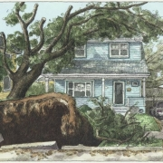 <b>6189 Cedar Street, Day 5</b><br/>2003<br/>Watercolour, pen & pencil on paper<br/>7.5 x 15 inches