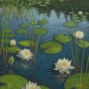 <b>Lilies in Morning Light</b><br/>2006<br/>Oil on Canvas<br/>36 x 24 inches