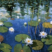 <b>Waterlilies</b><br>1997<br>oil on canvas<br>30 x 40 inches