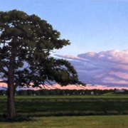 <b>Tree at Sunset</b><br>2009<br>oil on canvas<br>18 x 40 inches